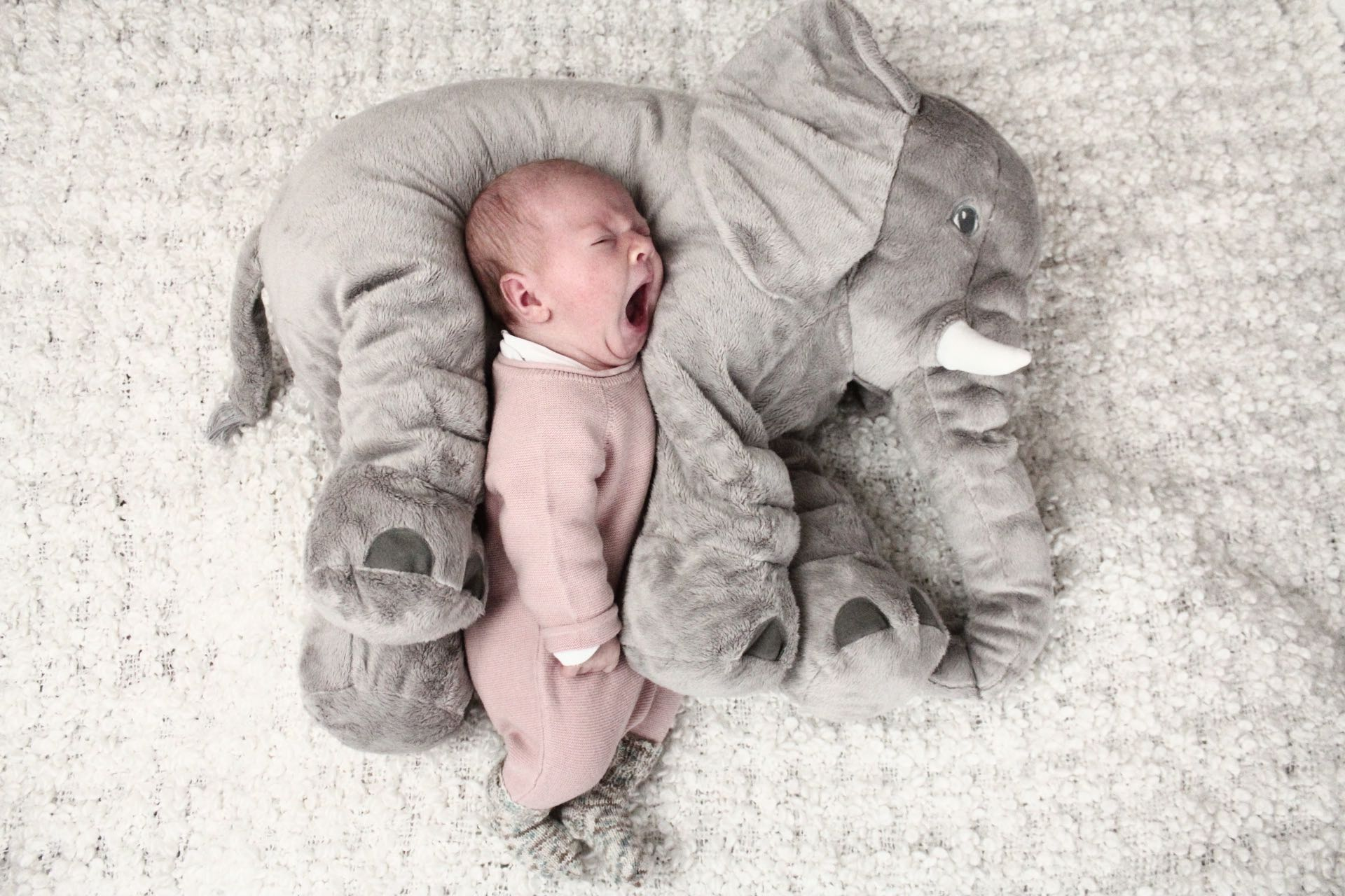 Emma Elefant 3